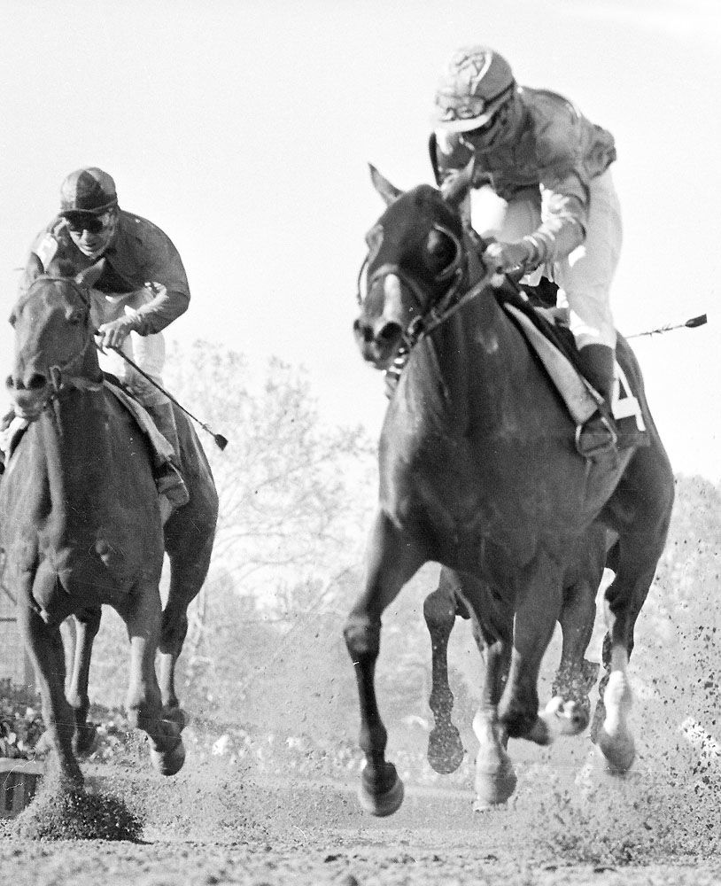 1964: Northern Dancer
