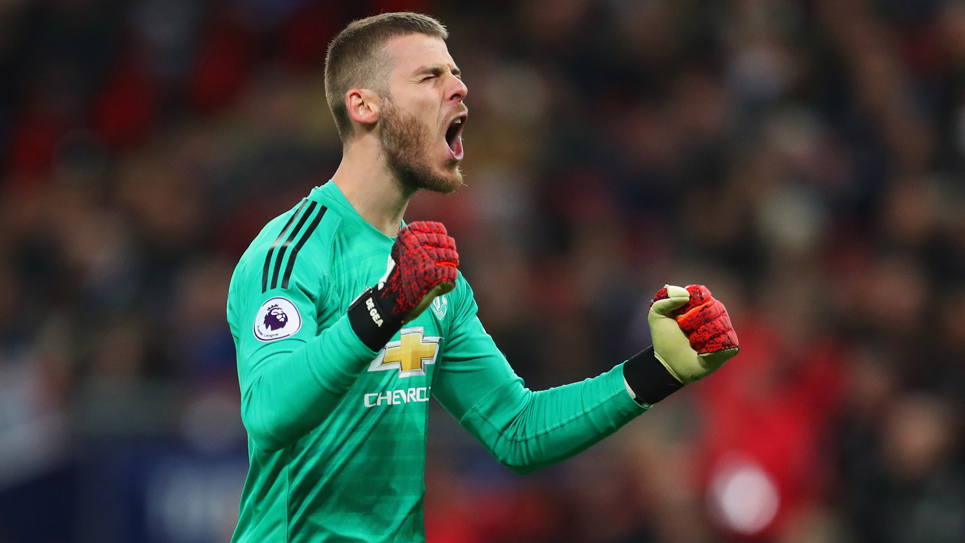 Image result for David de Gea