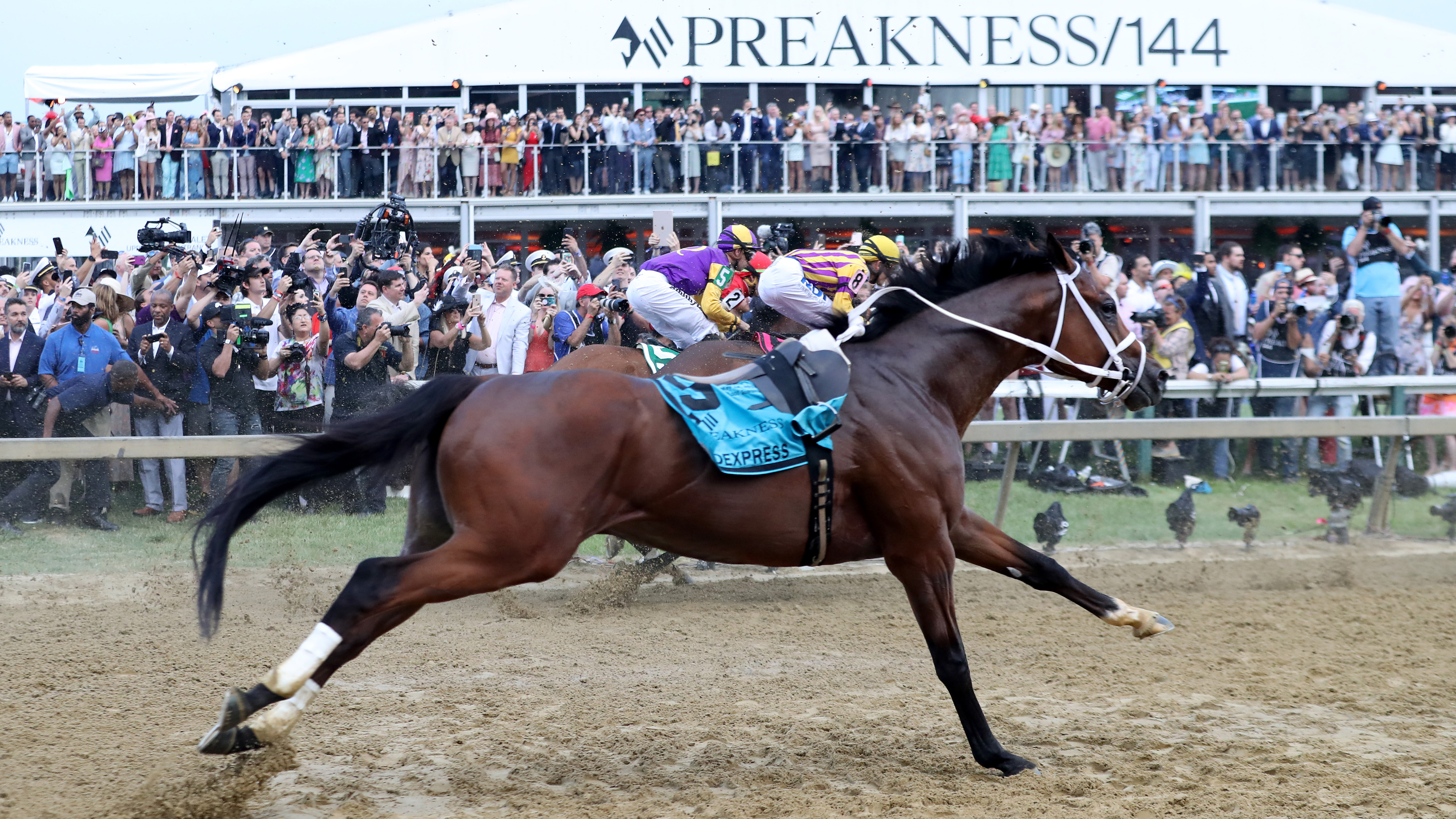 horses running in the preakness 2020