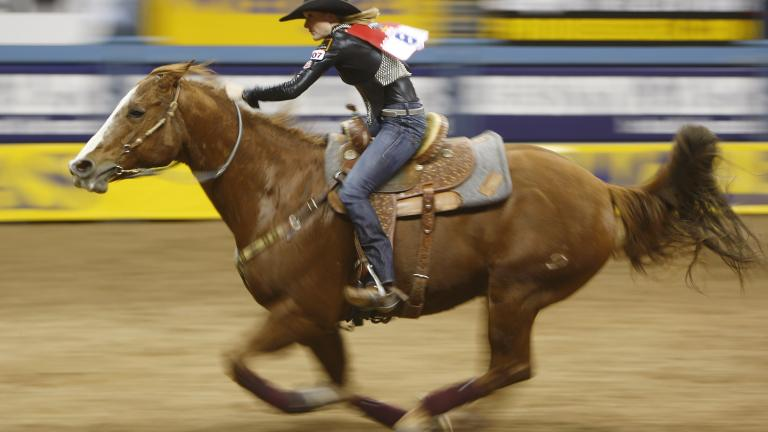 Lindsay Sears, barrel racer