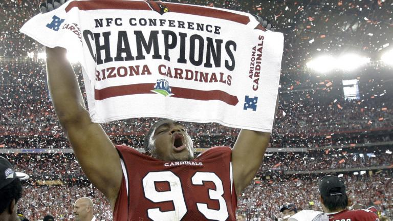 Image result for cardinals nfc championship game