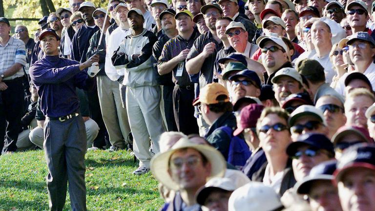 All eyes on Tiger