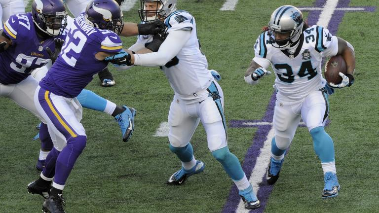 Vikings 31, Panthers 13