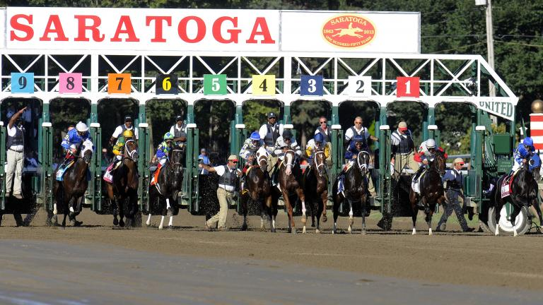 $1 million Travers Stakes (August 24, 2014)