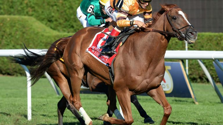 $500,000 Fourstardave Handicap (August 10, 2013)