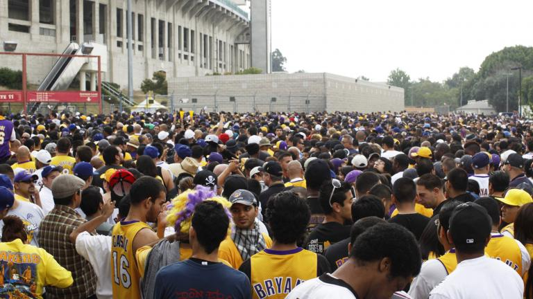 Sea of purple and gold