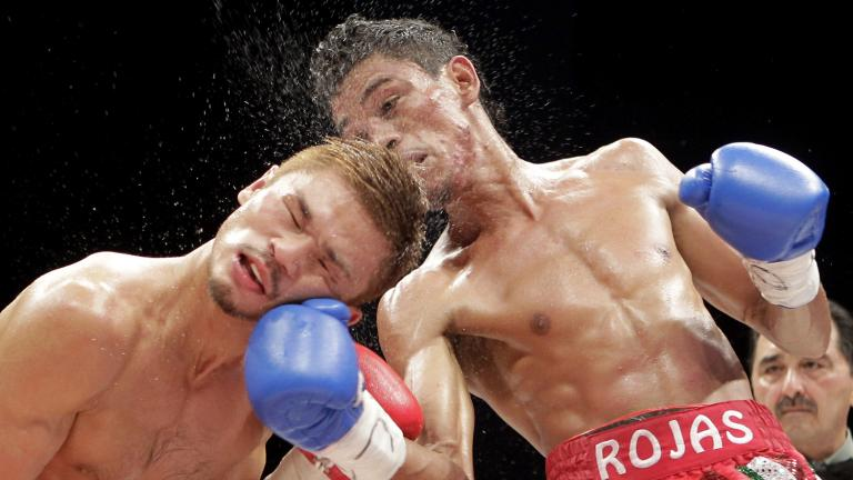 Hooked on boxing
