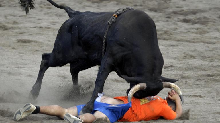 Mess with the bull ...