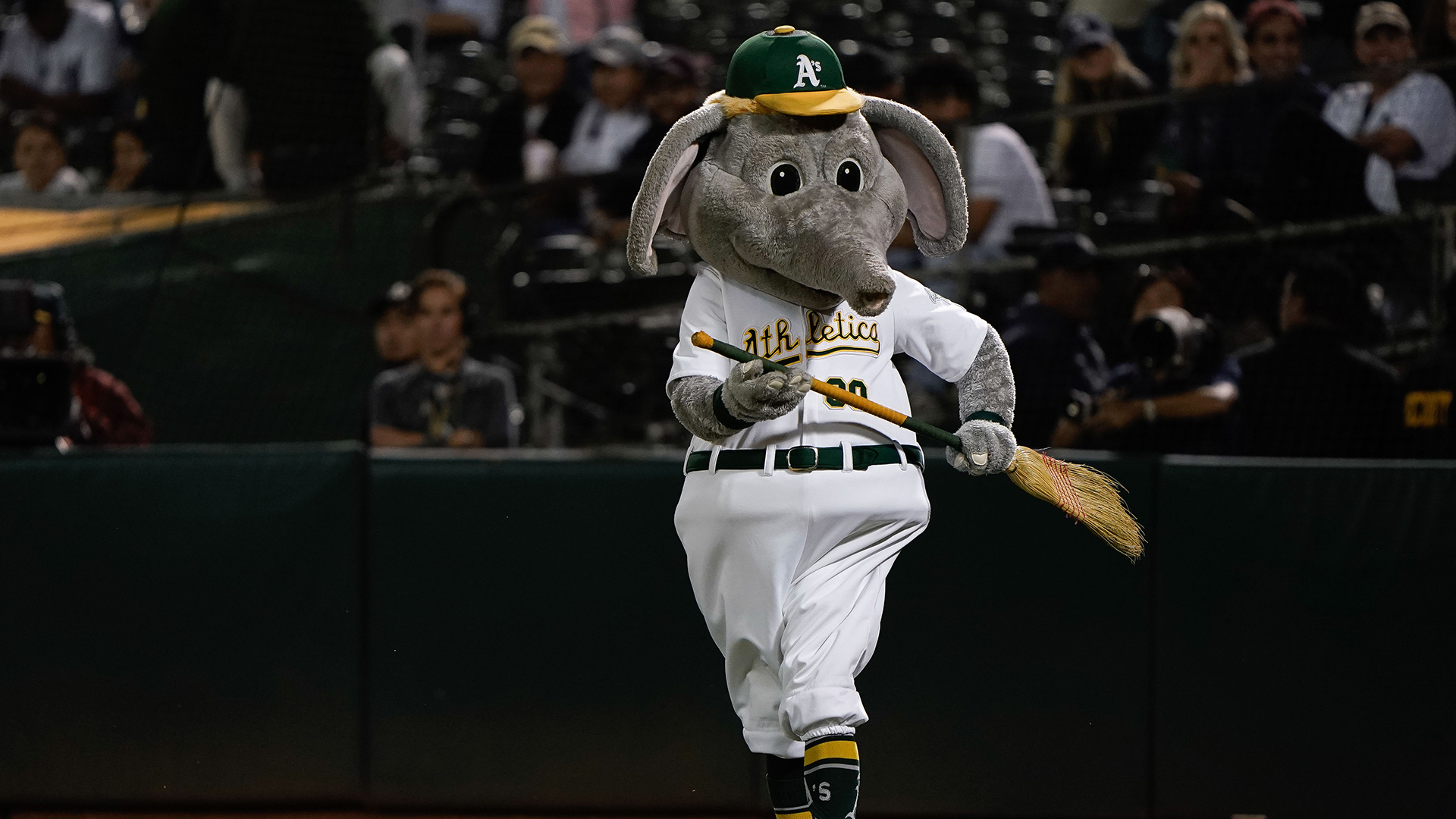A's race out to early lead, complete sweep of Yankees behind Tanner